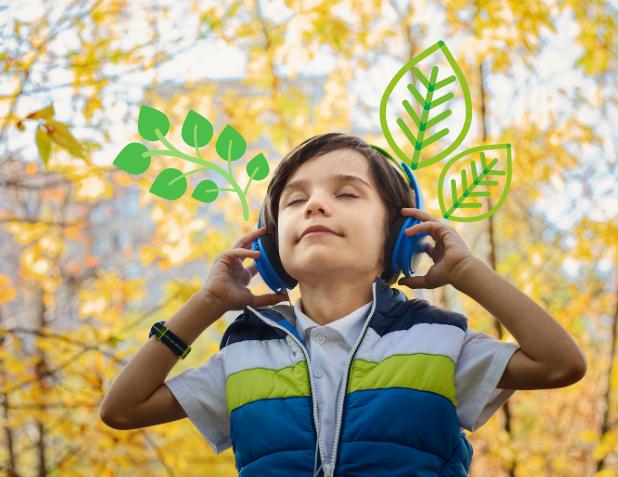 planter des arbres avec les oreilles
